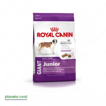 ROYAL CANIN SIZE GIANT JUNIOR 15 KG