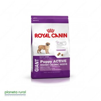 ROYAL CANIN SIZE GIANT PUPPY ACTIVE 15 KG