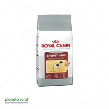 ROYAL CANIN SIZE ENERGY 4800 15 KG