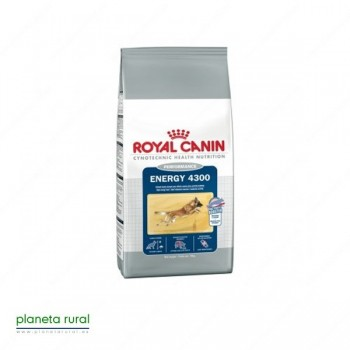 ROYAL CANIN SIZE ENERGY 4300 15 KG