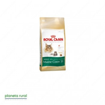ROYAL CANIN FELINE BREED MAINE COON 31 10 KG