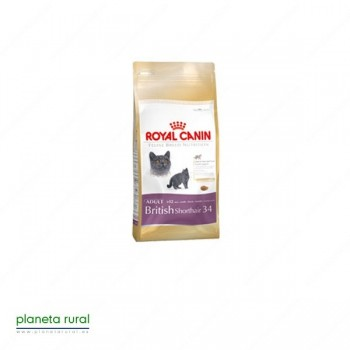 ROYAL CANIN FELINE BREED BRITISH SHORTHAIR 34 10K