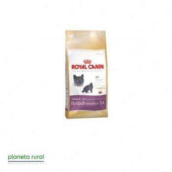 ROYAL CANIN FELINE BREED BRITISH SHORTHAIR 34 2 K