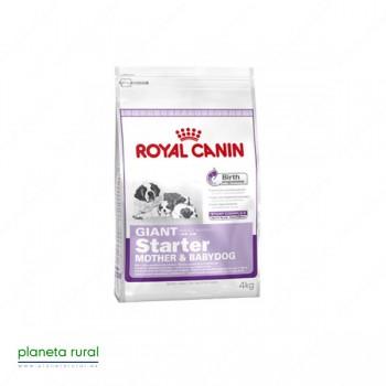 ROYAL CANIN SIZE GIANT STARTER 4 KG