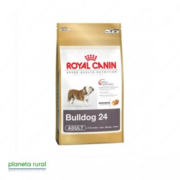 ROYAL CANIN BREED BULLDOG 24 12 KG