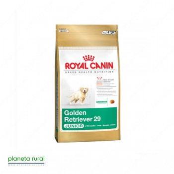 ROYAL CANIN BREED GOLDEN RETRIEVER JUNIOR 29 3 KG