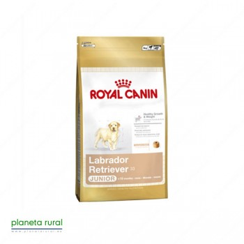 ROYAL CANIN BREED LABRADOR JUNIOR 30 12 KG