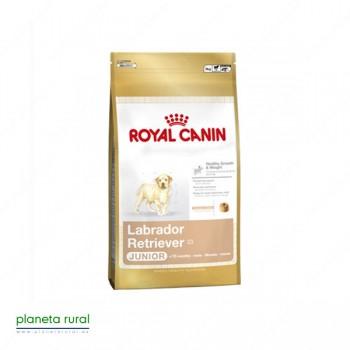 ROYAL CANIN BREED LABRADOR JUNIOR 30 12 KG