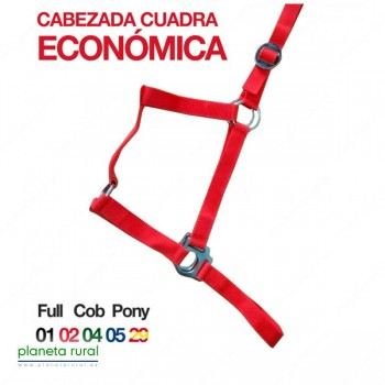 CABEZADA CUADRA ECO. 1282 COB B/ESPAÑA