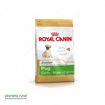 ROYAL CANIN BREED CARLINO JUNIOR 25 1,5 KG