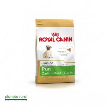 ROYAL CANIN BREED CARLINO JUNIOR 25 1,5 KG